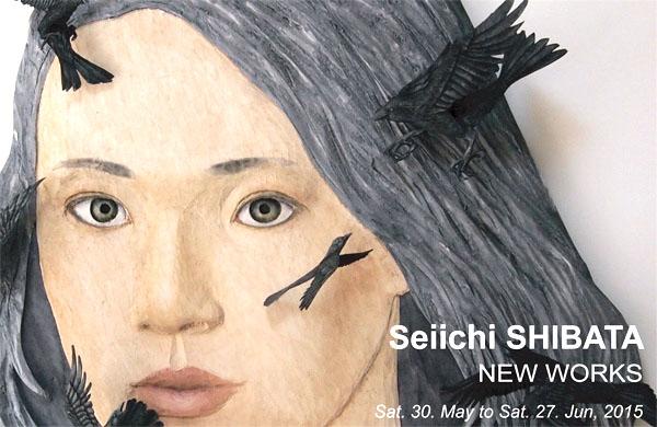 """Seiichi Shibata """"new works"""""""