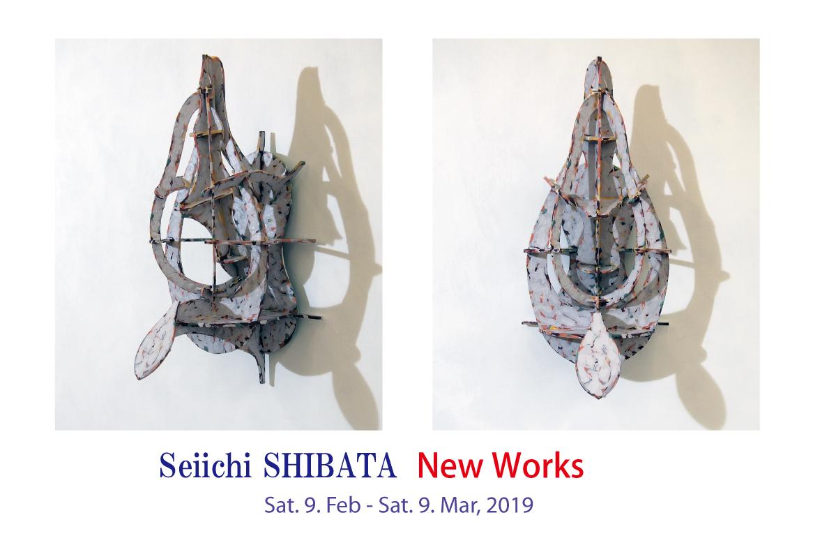 "Seiichi SHIBATA Solo Show""New Works"""
